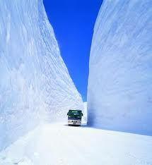 雪の大谷.jpg